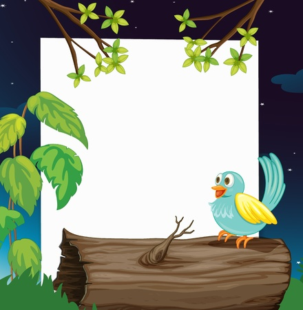 dry flies: Illustration of a bird and a white board in a beautiful dark night Illustration