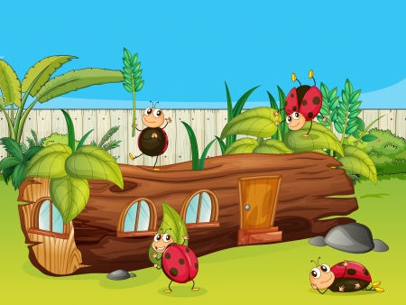 Illustration of ladybugs and a house in a beautiful nature Vector