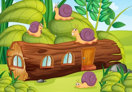 Illustration of snails and wood house in green nature Vector