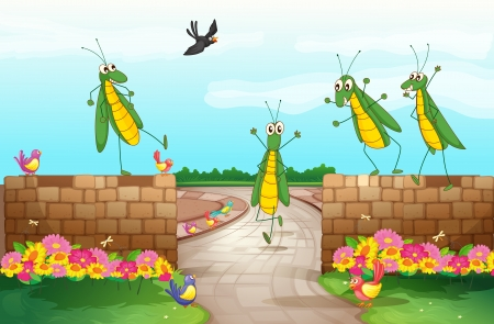 grasshopper: Illustration of grasshoppers near the wall