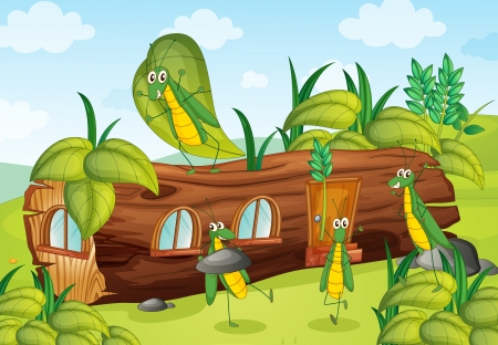 grasshoppers: Illustration of grasshoppers and a house in a beautiful nature