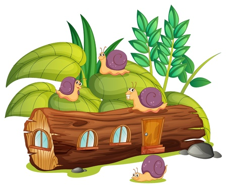 plant stand: Illustration of snails and a wood house in a green nature