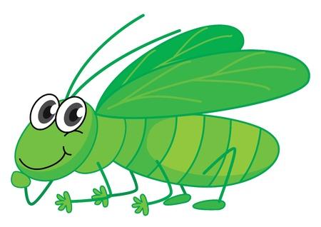 grasshopper: Illustration of a smiling grasshopper on a white background