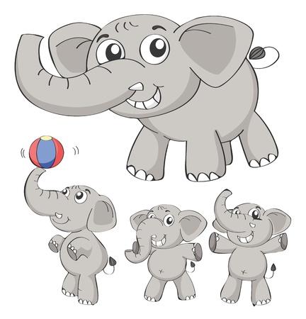 large group of animals: Ilustraci�n de los elefantes en un fondo blanco