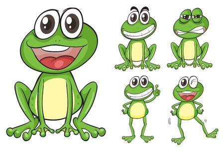 Illustration of frogs on a white background Stock Vector - 17036880
