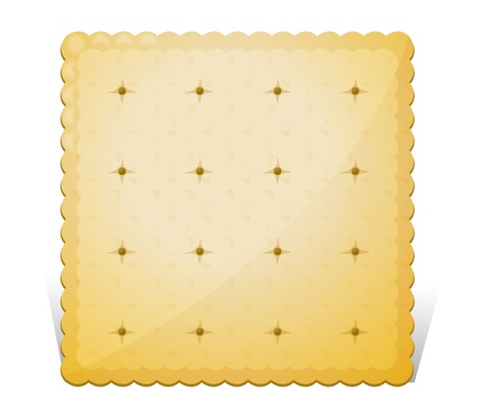 Illustration of a biscuit on a white background Vector