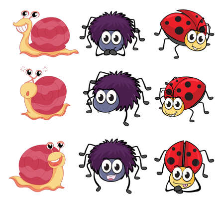 Illustration of a spider, a ladybug and a snail on a white background Stock Vector - 17046717
