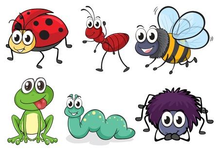 abeja caricatura: Ilustración de diversos animales e insectos en blanco Vectores