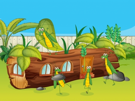 grasshoppers: Illustration of a wood house and grasshoppers in a beautiful nature Illustration