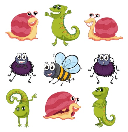 Illustration of various insects and animals on a white background Stock Vector - 17082598