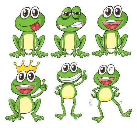 sapo principe: Ilustraci�n de las ranas verdes sobre un fondo blanco