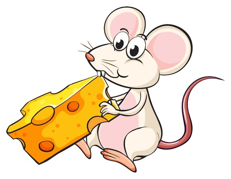 Illustration of a mouse eating cheese on a white background