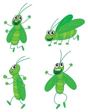 Illustratie van een vier sprinkhanen op een witte achtergrond Vector Illustratie