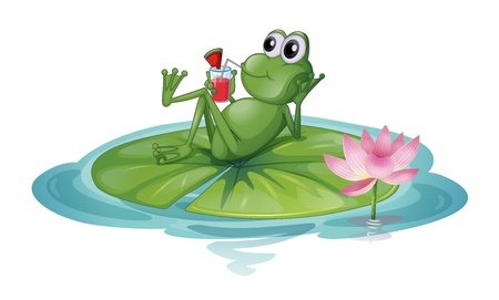 Illustration of a frog relaxing on a leaf on a white background