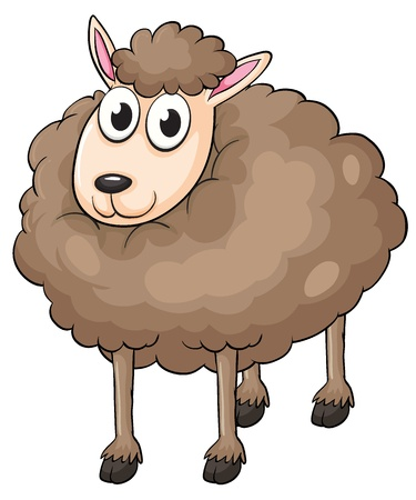 Illustration of a sheep on a white background Vector