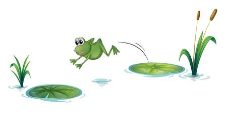 Ilustración de una rana que salta sobre un fondo blanco