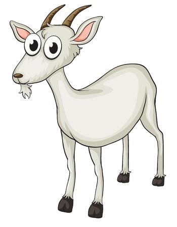 Illustratie van een geit op een witte achtergrond