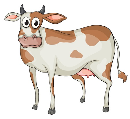 holsteine: Illustration of a cow on a white background Illustration