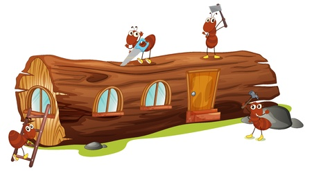 timber cutting: Illustration of ants and a wood house on a white background Illustration