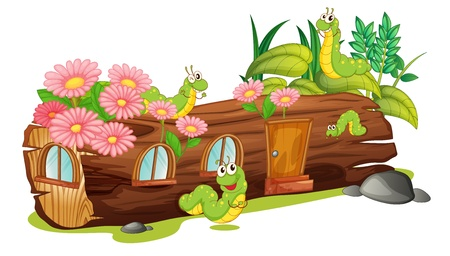 Illustration of caterpillars and a wood house on a white background Vector