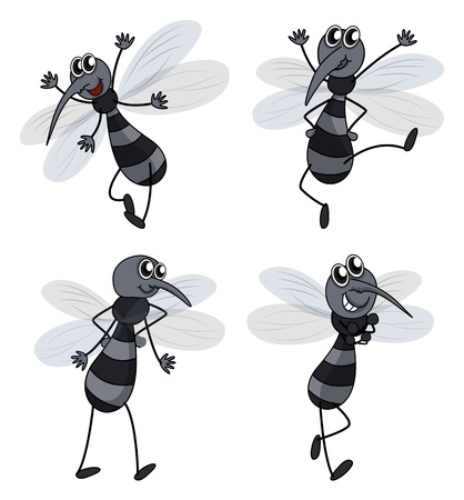 mosquito bite: Illustration of four mosquitoes on a white background Illustration