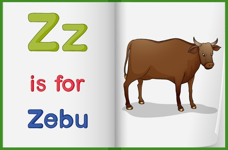 worksheet: Illustration of a zebu in a book on a white background