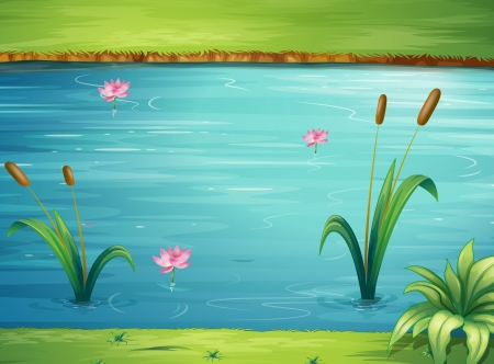 river bank: Illustration of a river and a beautiful landscape