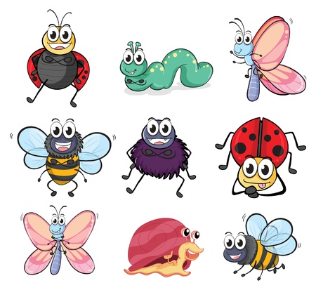 Illustration of various insects and animals on a white background Vector