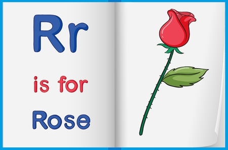 letter r: Illustration of a rose in a book on a white background Illustration
