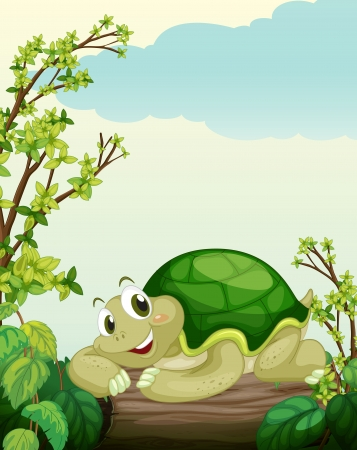 green turtle: Illustration of a turtle lying on dry wood in a beautiful nature