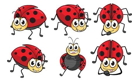 Illustration of smiling ladybugs on a white background