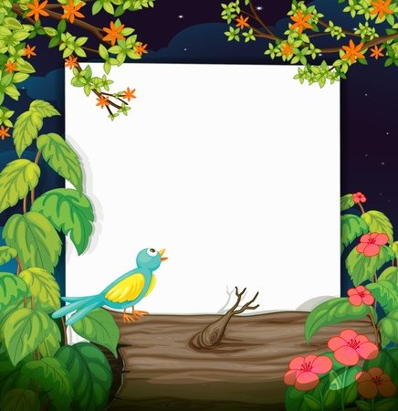 shinning: Illustration of a bird and a white board in a beautiful dark night Illustration