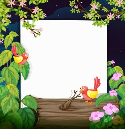 estrella caricatura: Ilustración de los pájaros y un tablero blanco en una noche oscura hermosa Vectores