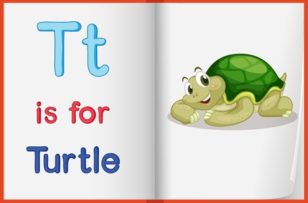 learning english: Illustration of a turtle in a book on a white background