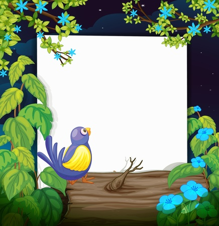 Illustration of a bird and a white board in a beautiful dark night Illustration