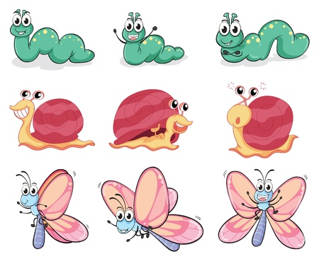 Illustration of a caterpillar, a butterfly and a snail on a white background Vector