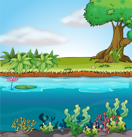 Illustration of land and aquatic environment in a colorful background. Stock Vector - 17339128