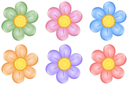 daisies: Illustration of colorful flowers on a white background