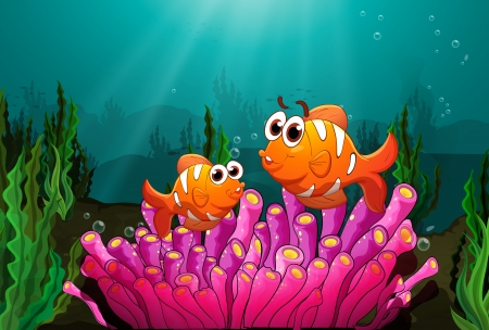 anemones: Illustration of two fishes above a pink coral found underwater Illustration