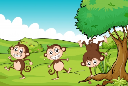Illustration of the three monkeys dancing under a tree Stock Vector - 17338966