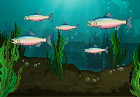 down under: Illustration of a school of fish underwater Illustration
