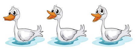 Illustration of three smiling ducks Stock Vector - 17338939