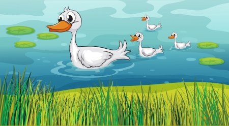 Illustration of a mother duck being followed by the little ducks Vector