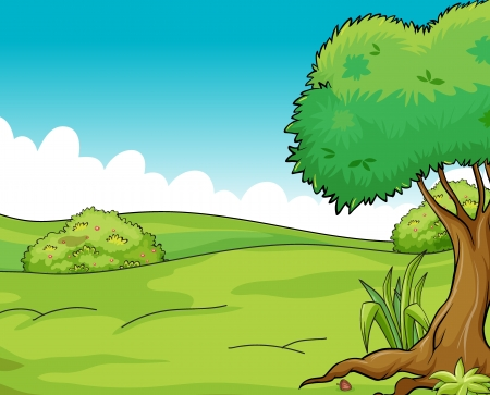 shrubs: Illustration of a clean and green scenic view Illustration