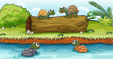 Four turtles swimming on water and standing on a log