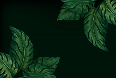 lamina: Illustration of eight leaves on a dark green background