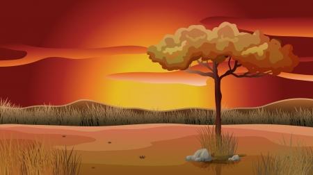 sun down: Illustration of a sunset view Illustration
