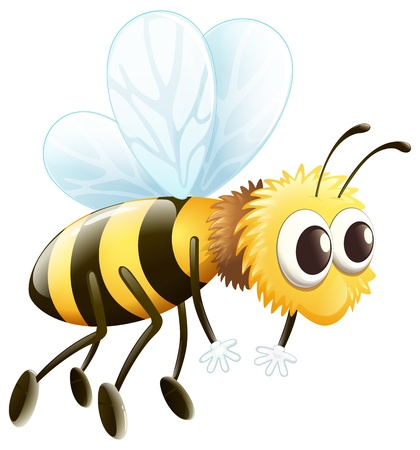 Illustration of a bee flying on a white background Vector
