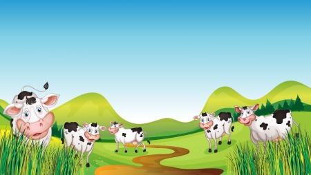 vaca caricatura: Ilustraci�n de un grupo de vacas en una vista de vegetaci�n