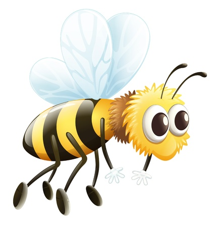 Illustration of a bee on a white background Stock Vector - 17358176